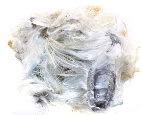 Asbestfaserbüschel