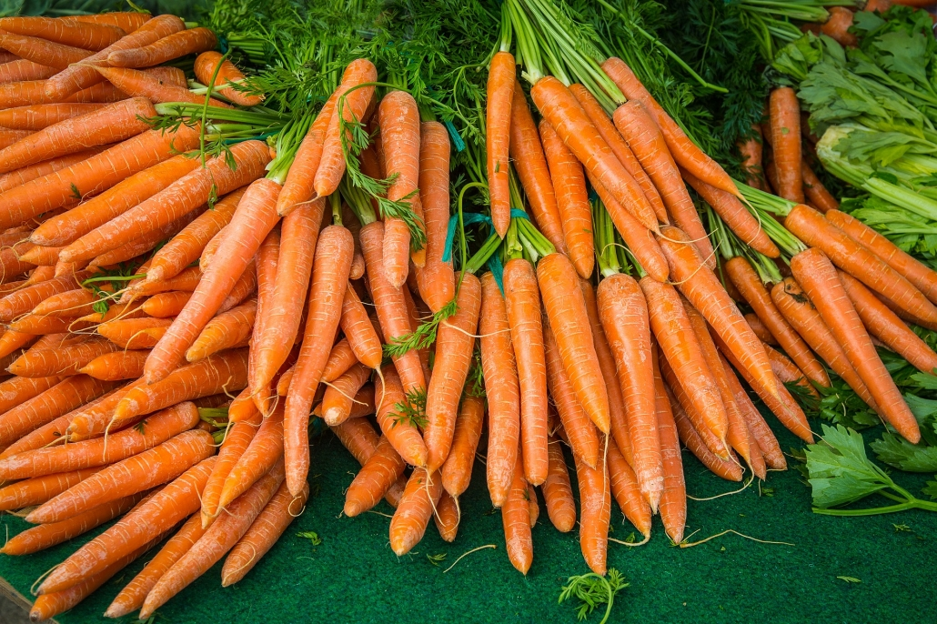 Karotten enthalten das färbende Karotin